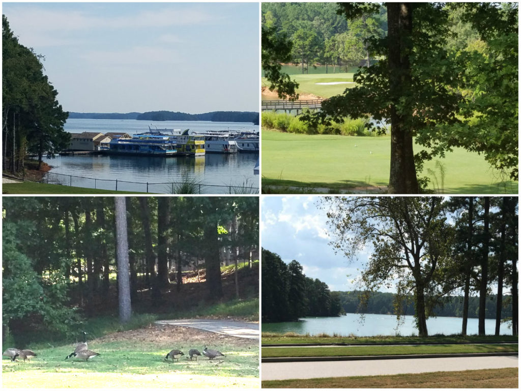 Scenes-from-the-bike-course-of-the-Lake-Lanier-Islands-Sprint-Triathlon.