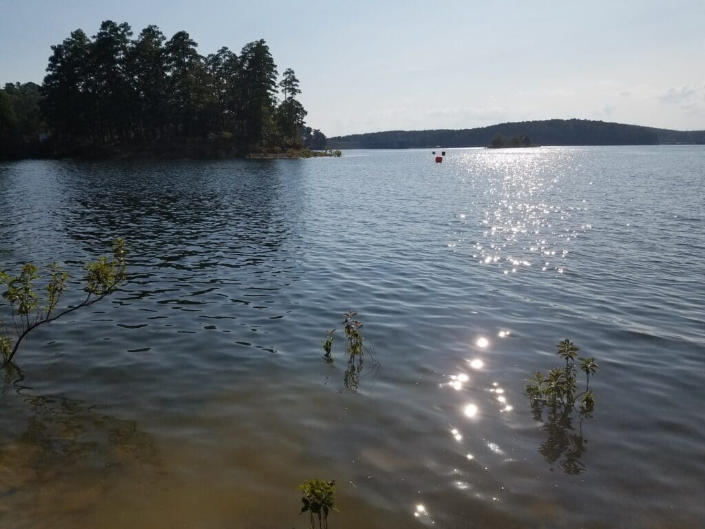 The swim course for the DeGray Lake triathlon started from the boat launch at the DeGray Lake Spillway Area.